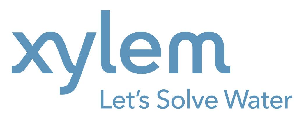 Xylem Remodeling