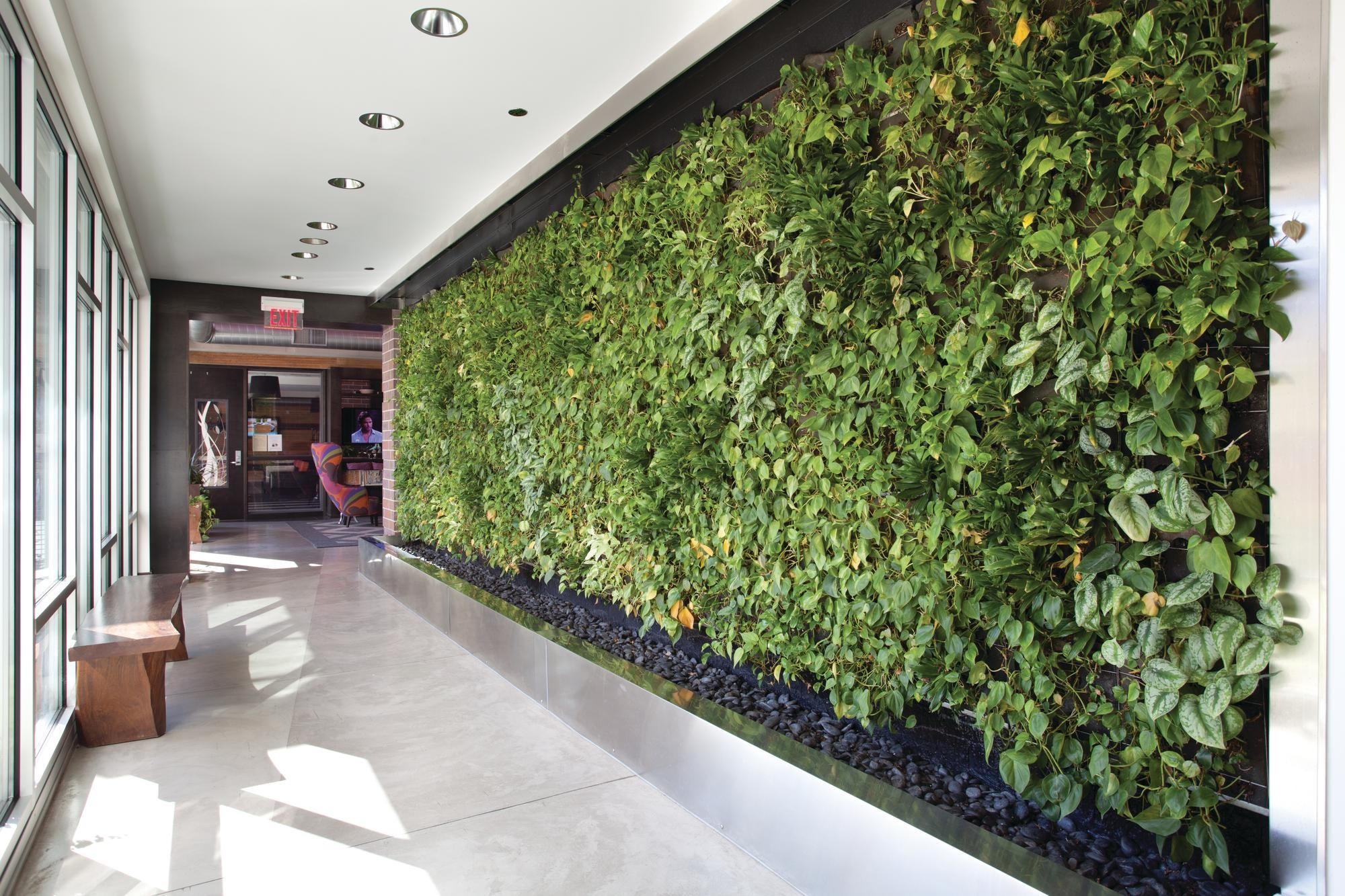 Salon De Jardin Modulo Green Roof And Wall Market Expected To Grow| Ecobuilding