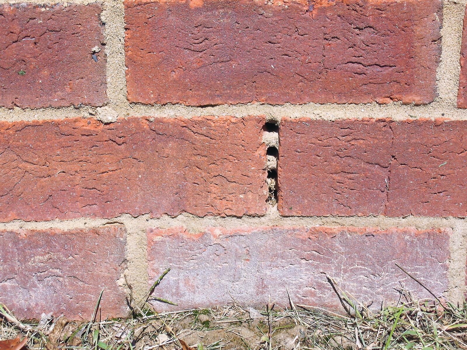 How To Add Brick To A Wall Adding Weep Holesmasonry Construction Brick