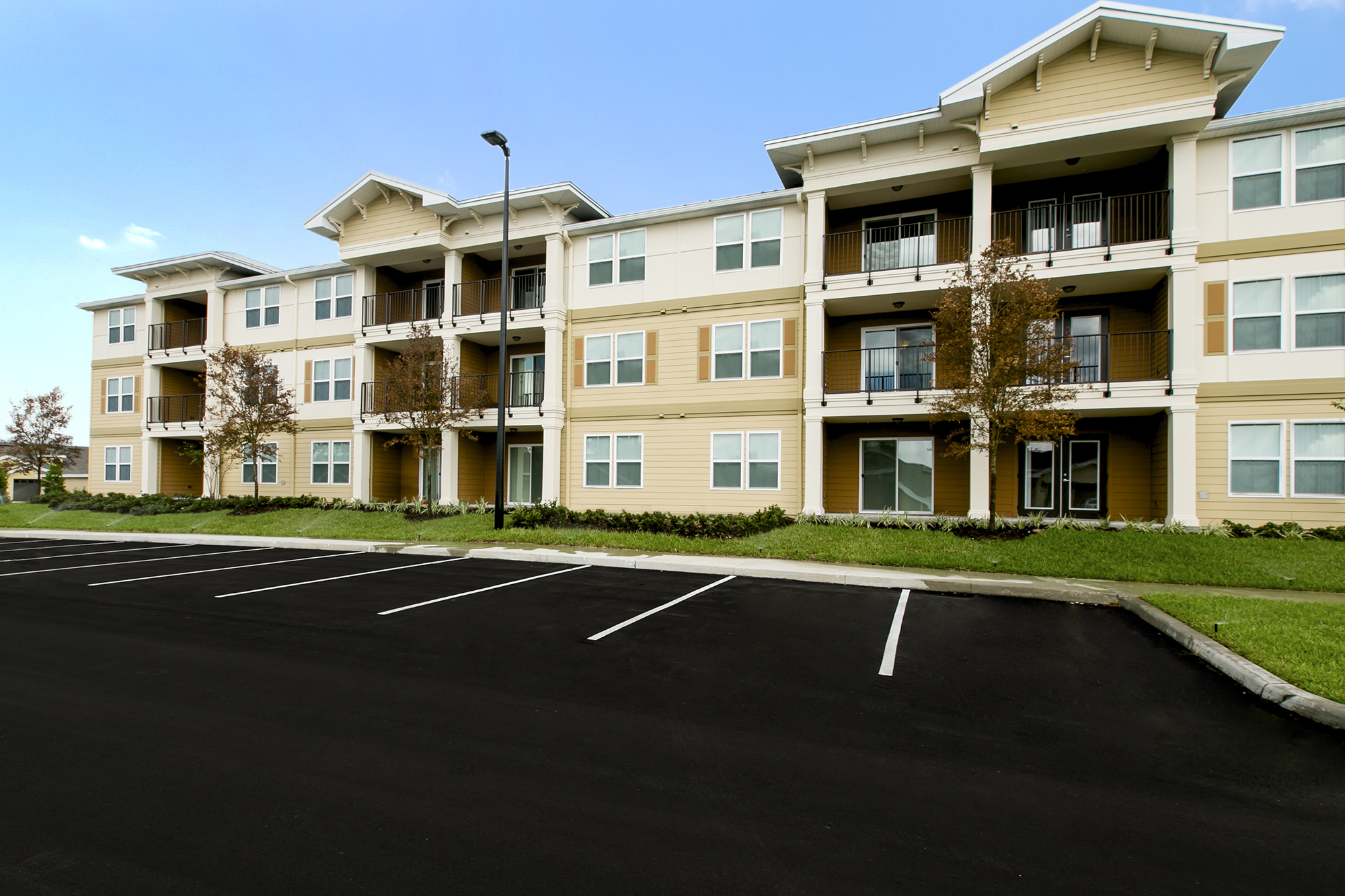 Apartments For Rent In The Senior Apartments In Brooksville Fl Vista Park Concord Rents