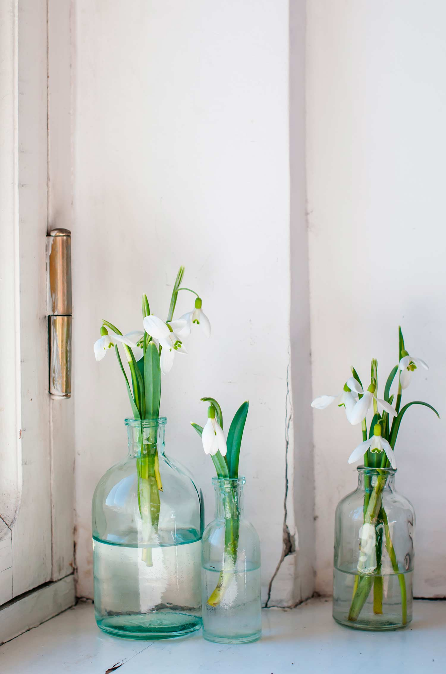 Jarrones De Cristal Decorados 10 Ideas Para Decorar Con Flores Westwing Magazine