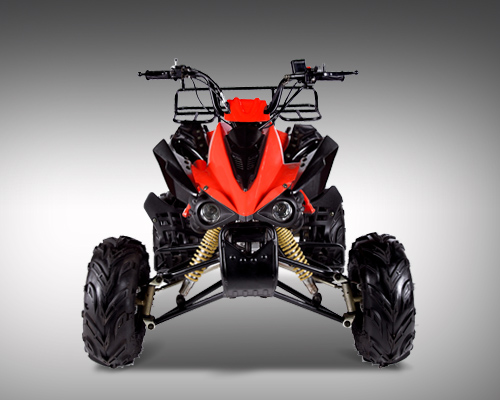 2016 Kandi SPORT 110 for sale in Erie, PA NorthCoast Powersports