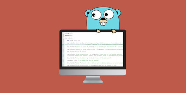 The Go Programming Language Guide Code Like a Pro Skillwise