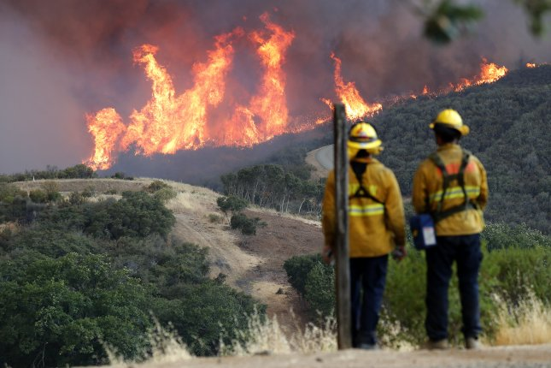 cdf fire incident report