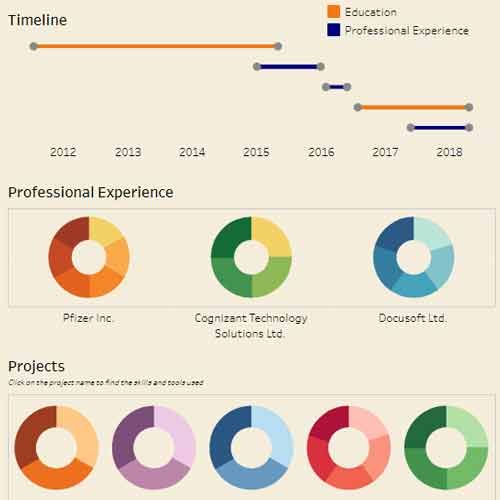 Stand out in your job search with an interactive Tableau resume
