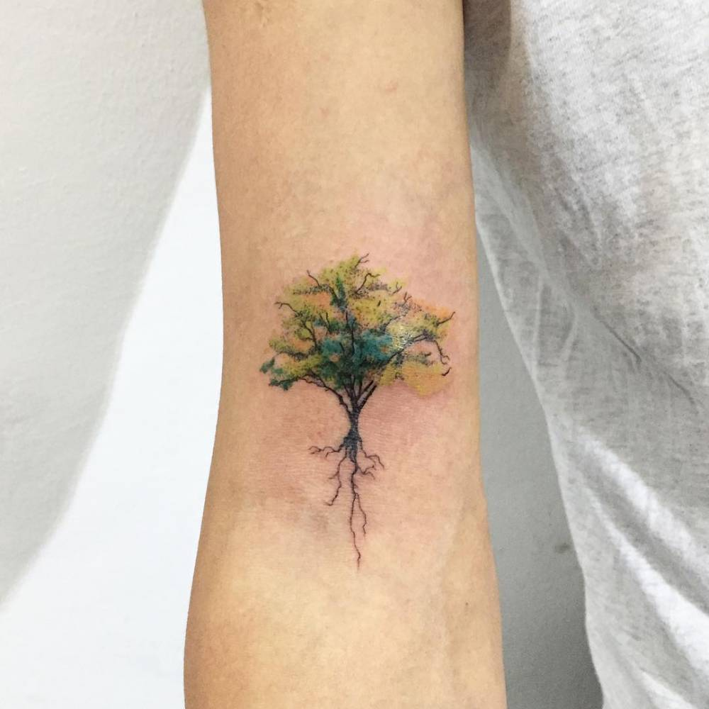 Tattoo Aquarell Tree Tattoo On The Right Bicep
