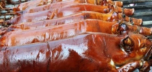 Lechon de Cebu: The Evolution   Cebu Finest