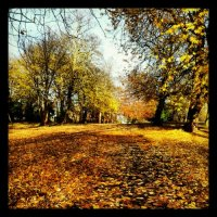 England + USA: Merry Autumn Days and A good Poem for Thanksgiving !