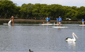 People paddle on surfboards at Currambene Creek, Jervis Bay