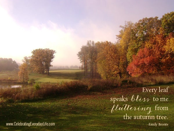 Free Desktop Wallpaper Scripture Fall Autumn Leaf Quotes Quotesgram