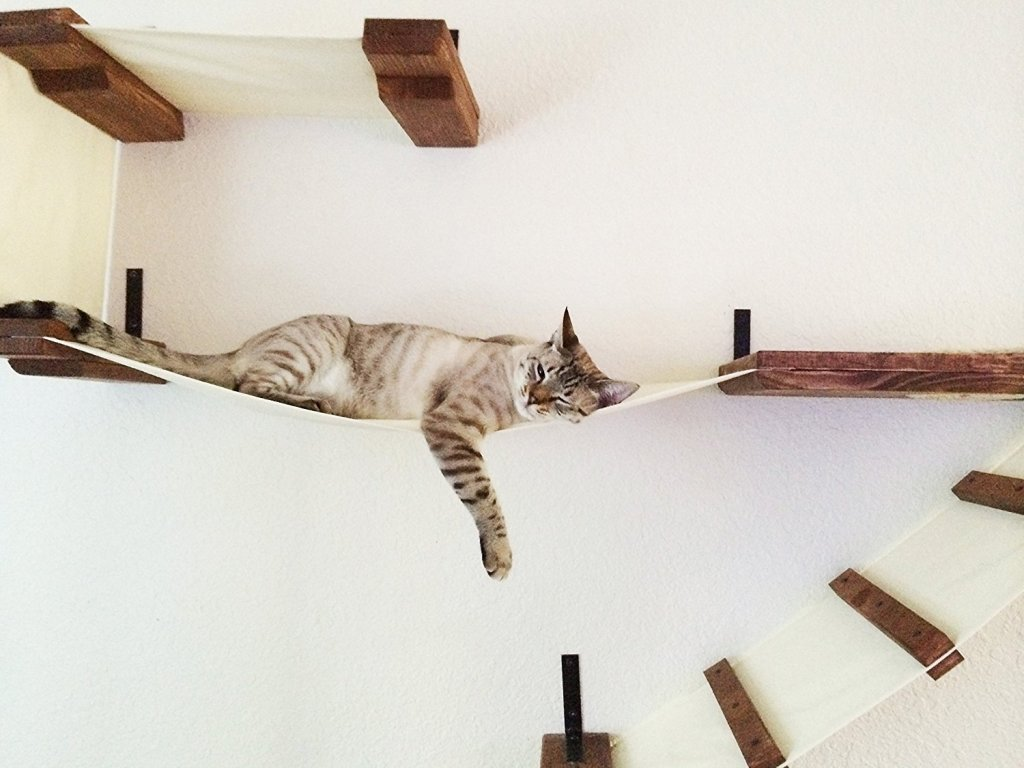 Cat Furniture Wall Wall Mounted Cat Furniture Furniture Ideas