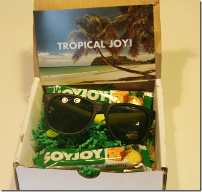 003 thumb Product Review: SoyJoy&rsquo;s Newest Flavor&ndash;Pineapple