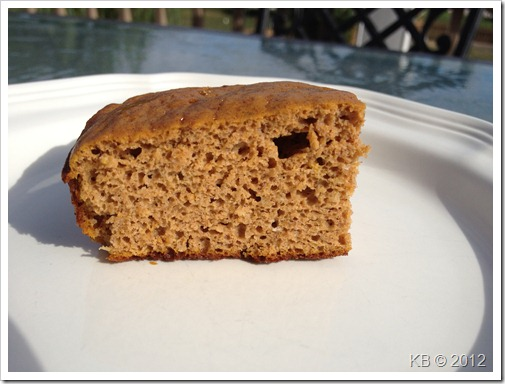 IMG 2454 thumb Review: Wholesome Cravings Pumpkin Protein Cake