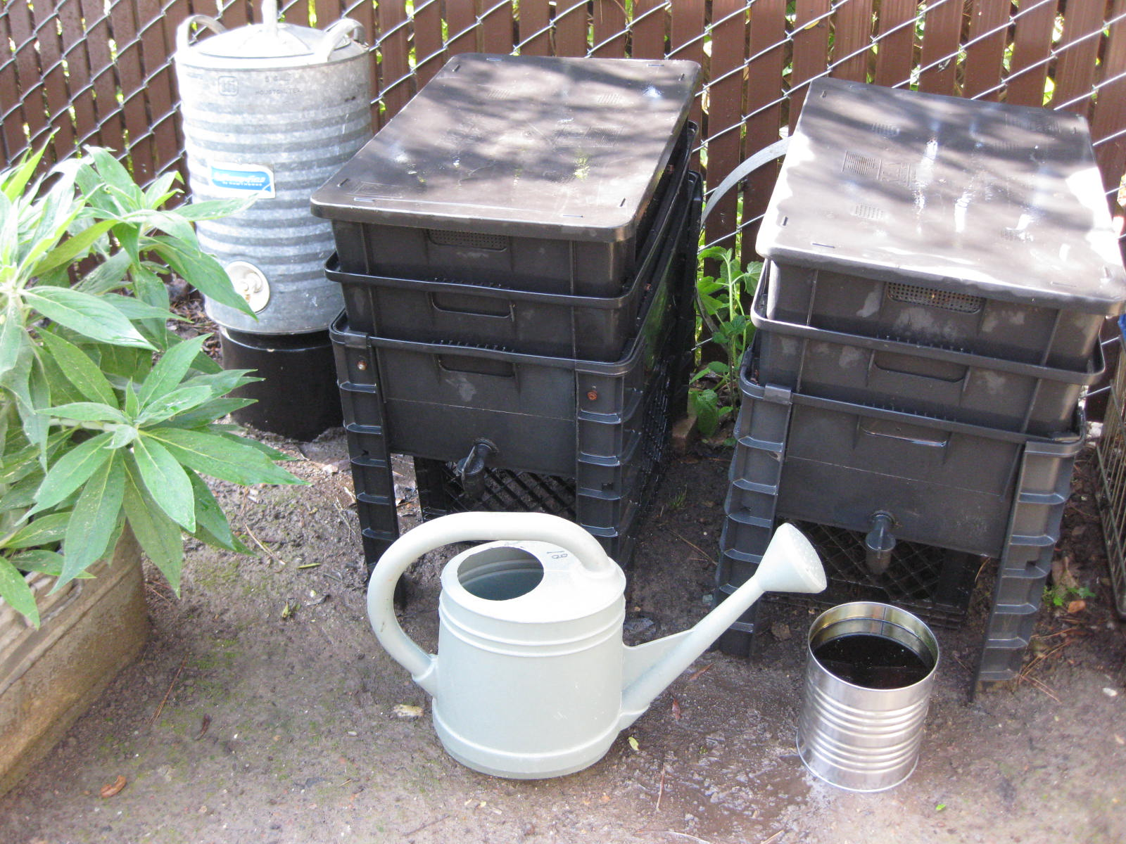 Compost Bins Australia Worm Composting For Beginners Central Coast Gardening