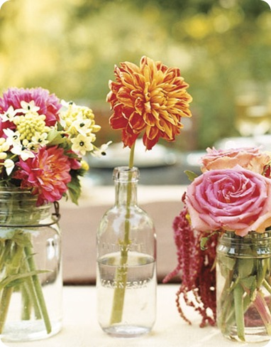 country living dahlias