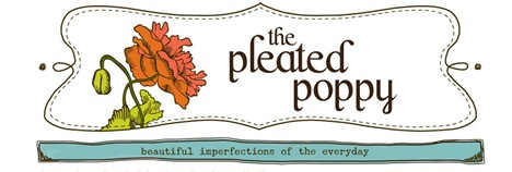 pleated poppy banner