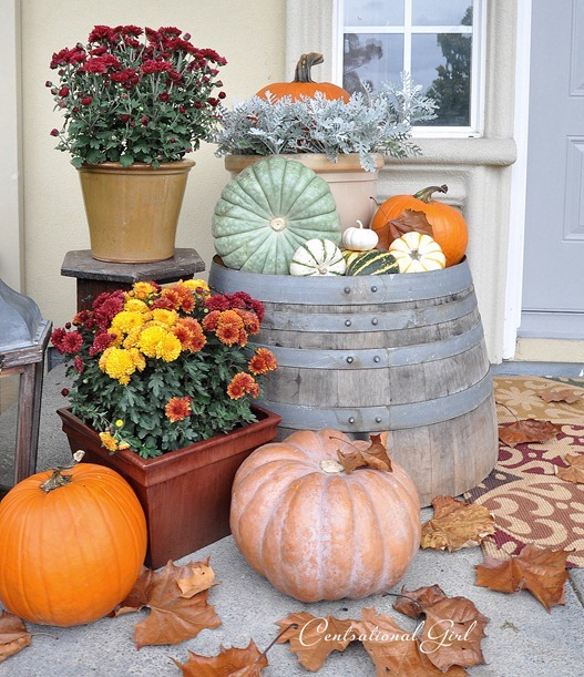 fall porch left side barrel cg