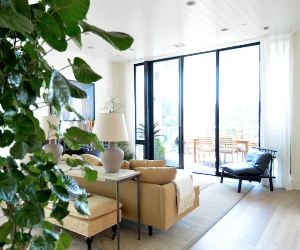 natural light family room