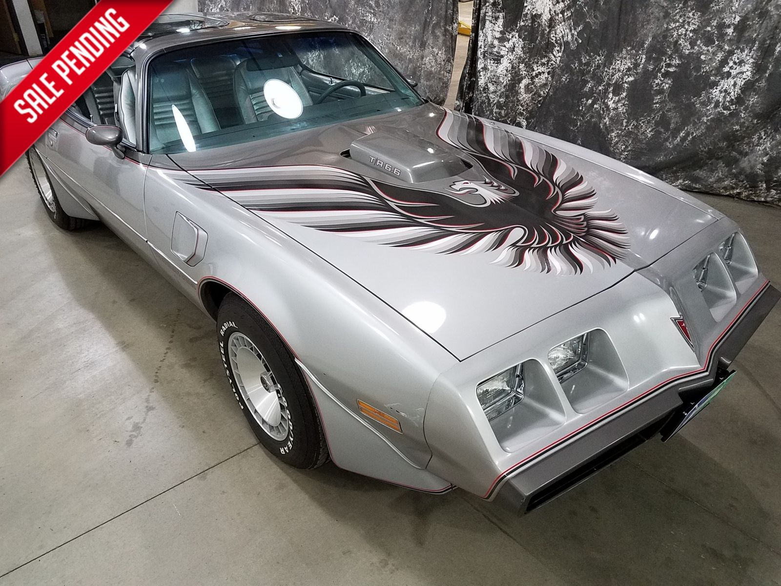 1979 Trans Am Picture 1979 Pontiac Trans Am Ws6 10th Anv City Nd Autorama Auto Sales