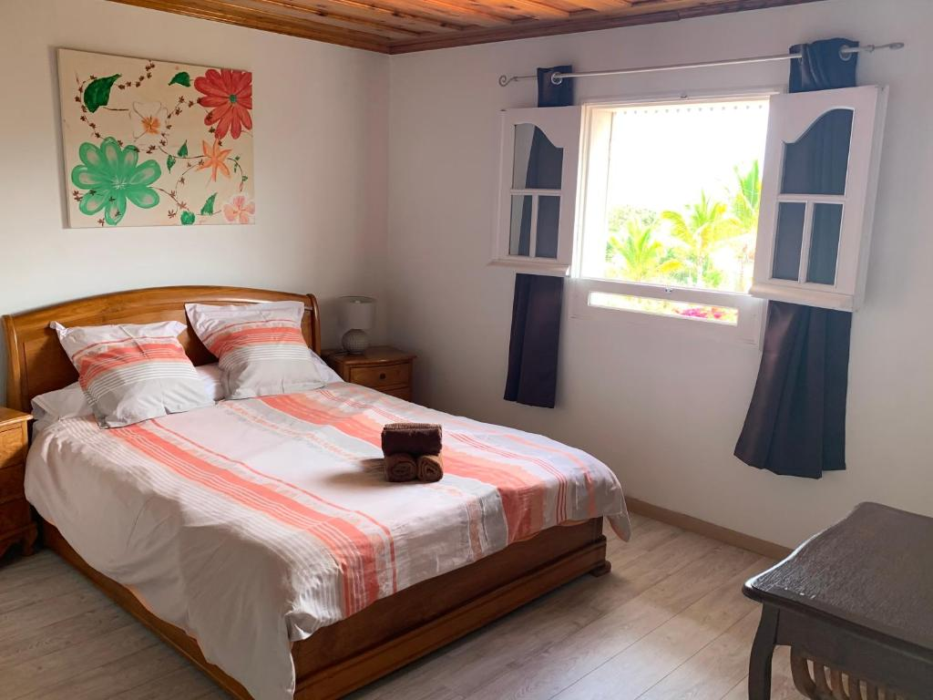 Bed And Breakfast Chambre D Hôte Le Camphrier 3 Saint Pierre Reunion Booking Com