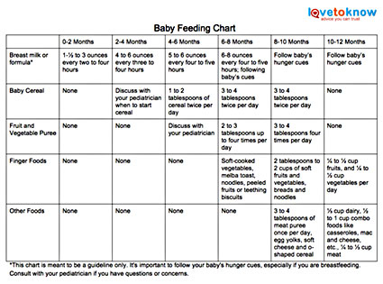 How Much Food Should You Feed Your Baby? LoveToKnow - baby feeding chart