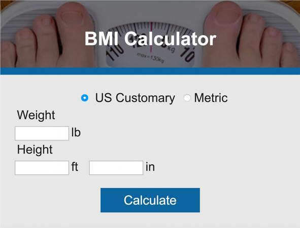 BMI Calculator LoveToKnow