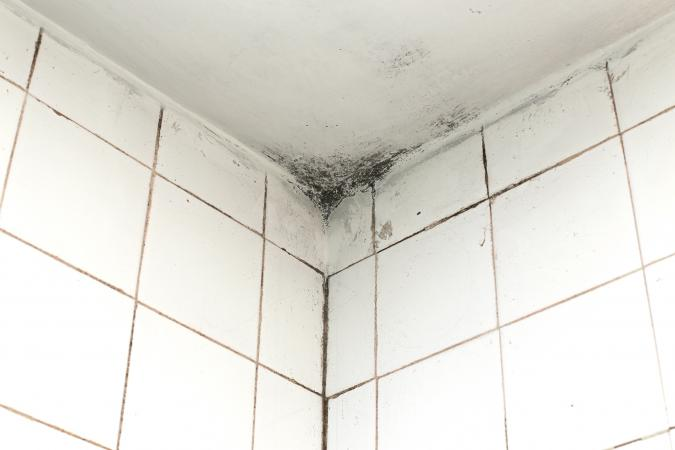 Cleaning Mold From Bathroom Ceilings