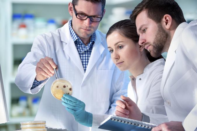 Degrees That Earn You the Most Money LoveToKnow - biomedical engineering job description