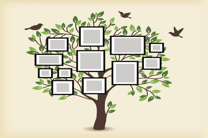 Printable Family Tree Chart for Free