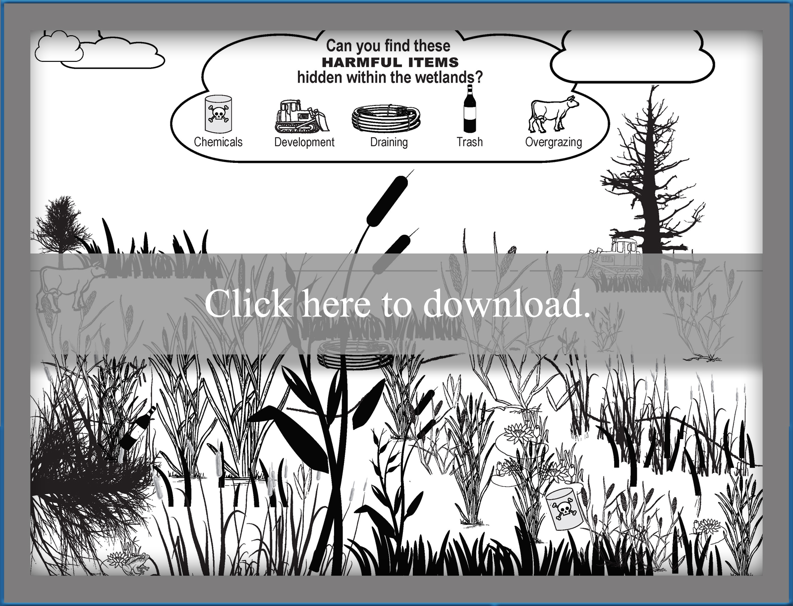 Wetlands For Kids Lovetoknow