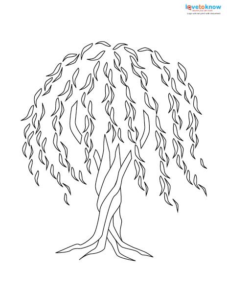 Willow Tree Tattoo LoveToKnow