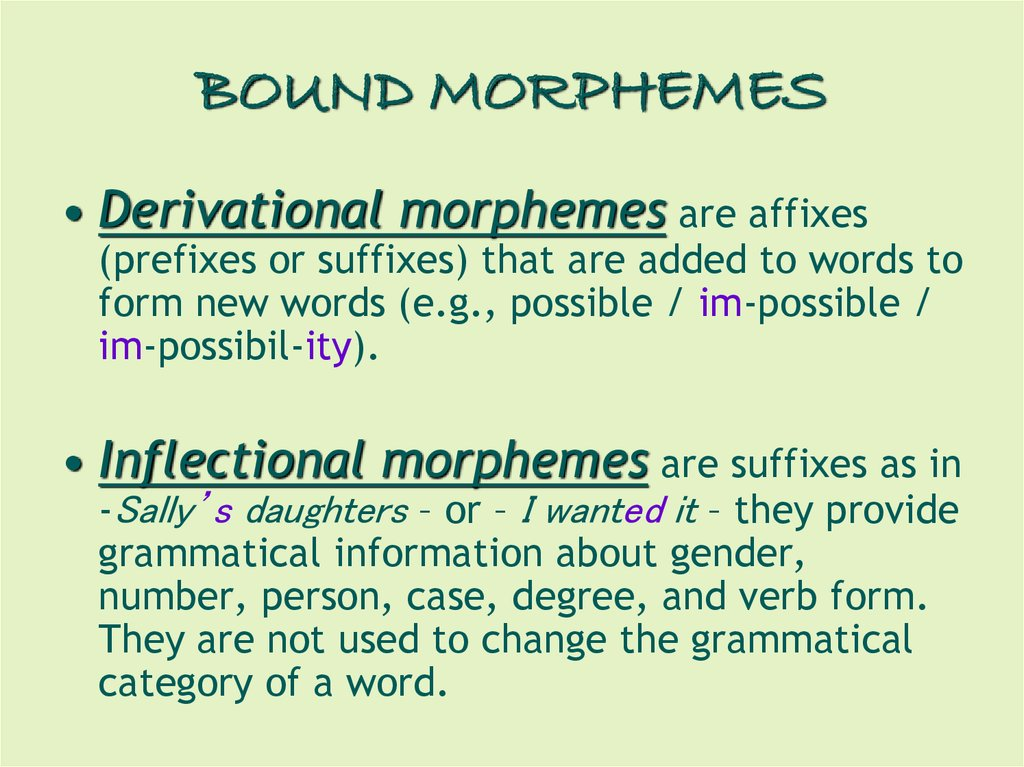 English Morphology - online presentation