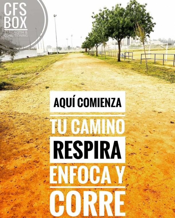 Wod CFS Box CrossFit Sevilla training Halterofilia enfoca respira sigue camino