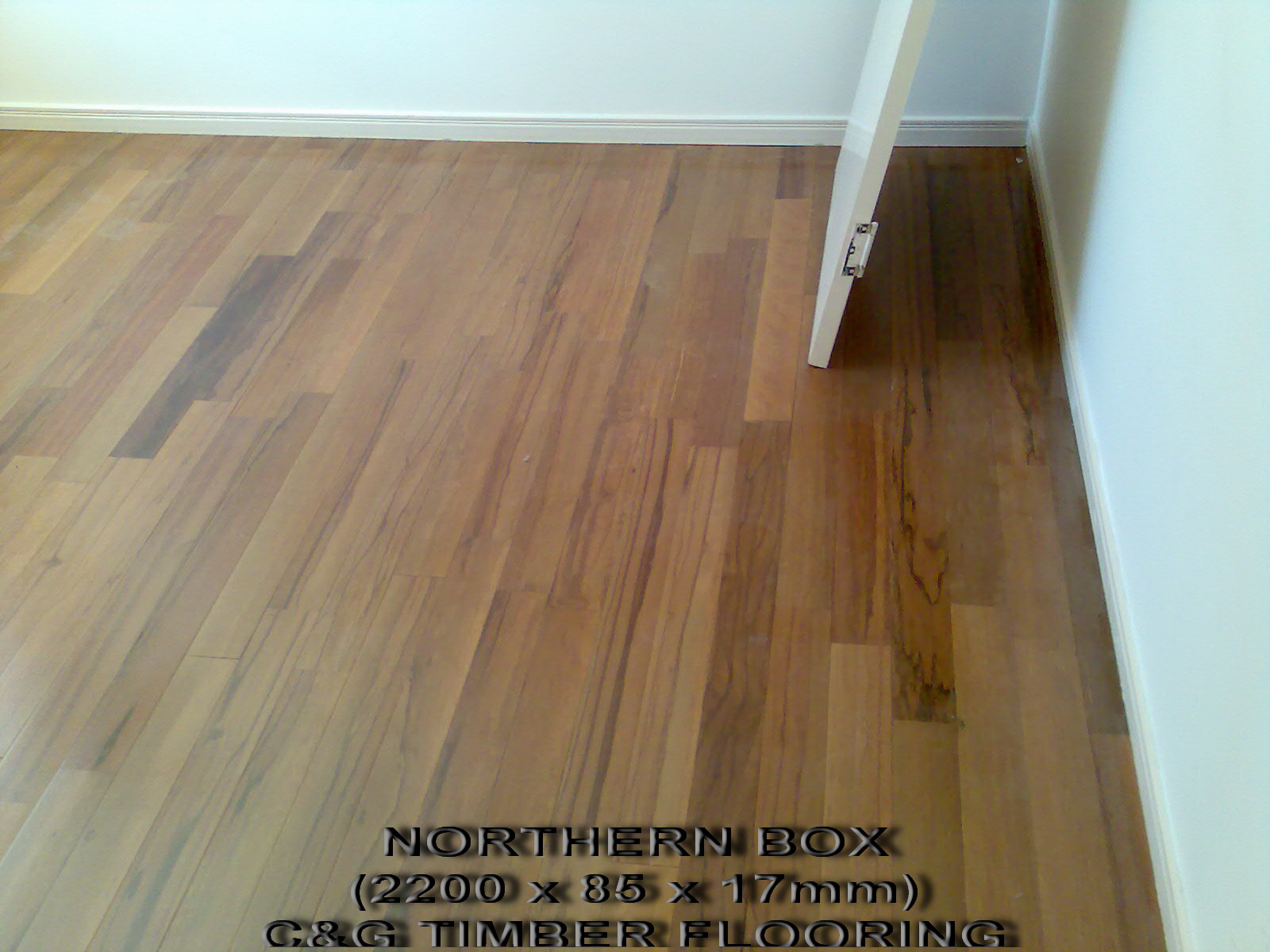 Bamboo Flooring Brisbane C And G Timber Flooring The Flooring Professionals