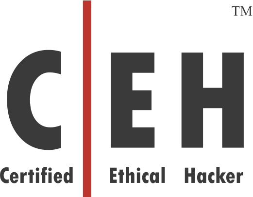 Certified Ethical Hacker Resume Certified Ethical Hacker Resume - certified ethical hacker resume