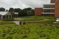 Green Roof on Howlett Hall   Chadwick Arboretum & Learning ...