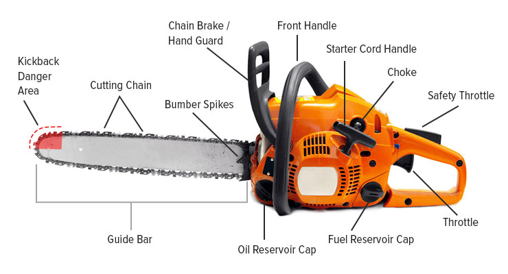 Chainsaw Buying Guide Chainsaw Journal