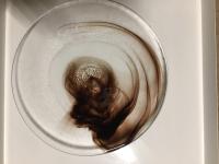 """Orrefors - Kosta Boda Glass Dishes / """"Mine"""" Dinner Plates ..."""