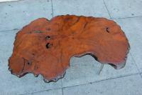Mid-Century Wood Slab Coffee Table | Chairish