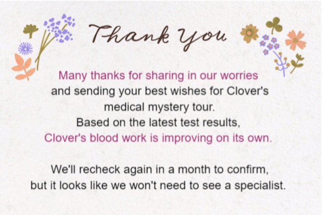 A Proper Thank You Note and Clover Medical News Champion of My Heart