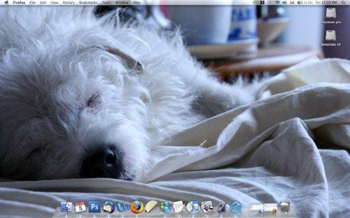 A screenshot of my desktop