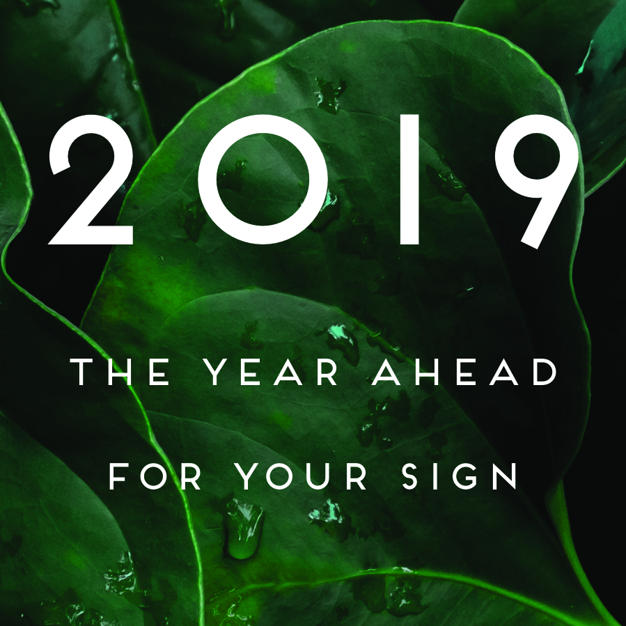Leo 2019 Mes A Mes Your 2019 Horoscope Chani Nicholas
