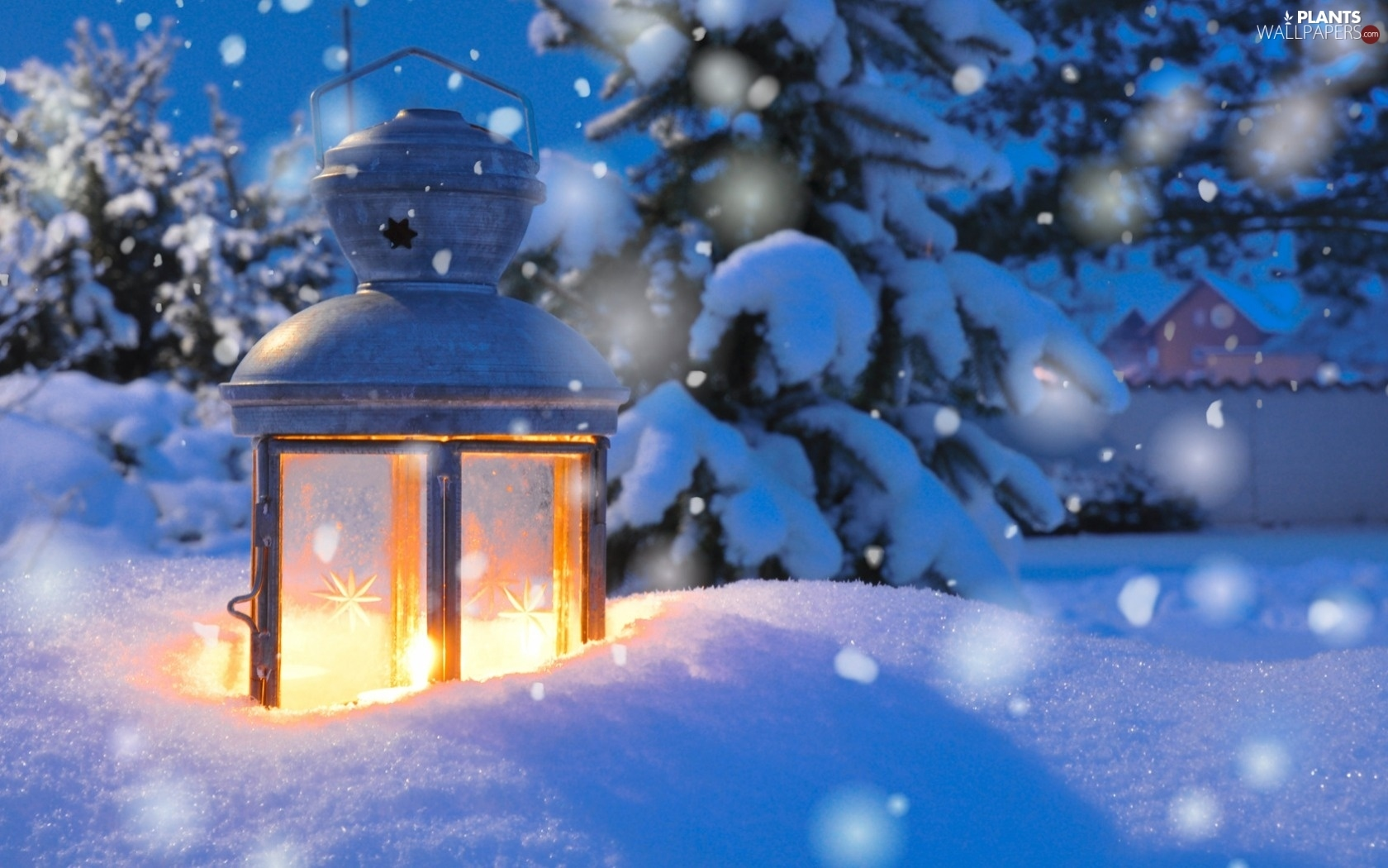 Snow Falling At Night Wallpaper Three Steps To Wisdom Chanmadhavi S Blog