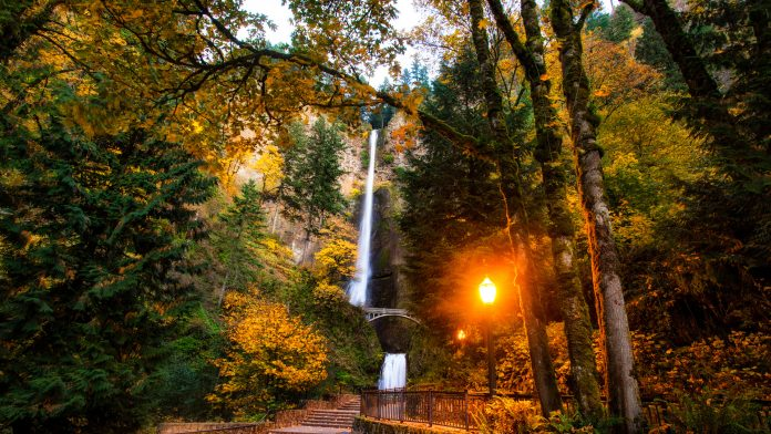 Multonomah Falls Wallpaper Silver Falls State Park In Oregon United States