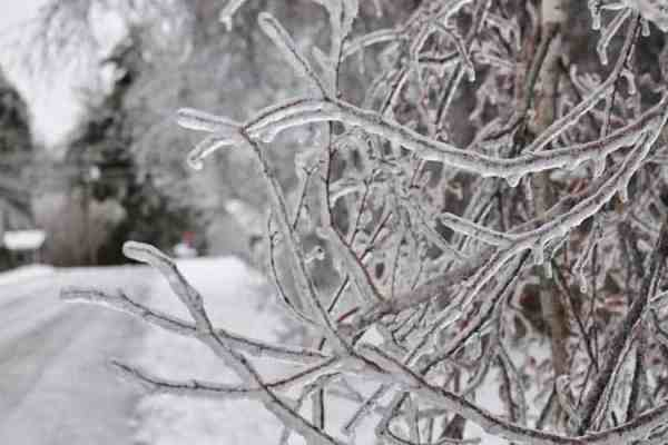 How To Protect Your Home During An Ice Storm