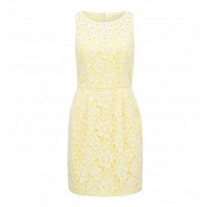 Carla Lace Applique Dress (Image Courtesy: Forevernew.co.in)