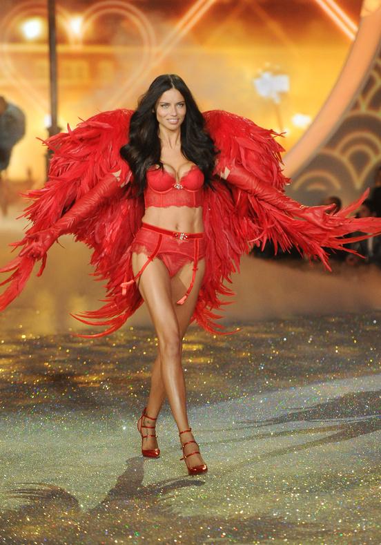 victorias-secret-fashion-show-2013-charonbellis-blog-mode1