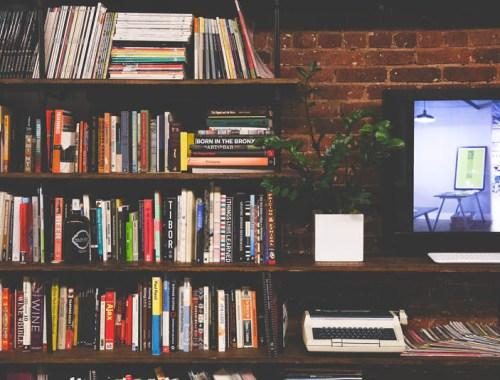 Choisir-une-bibliotheque-Charonbellis-blog-lifestyle