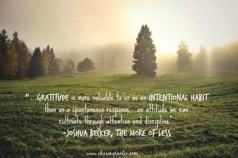 gratitude-as-an-attitude-quote