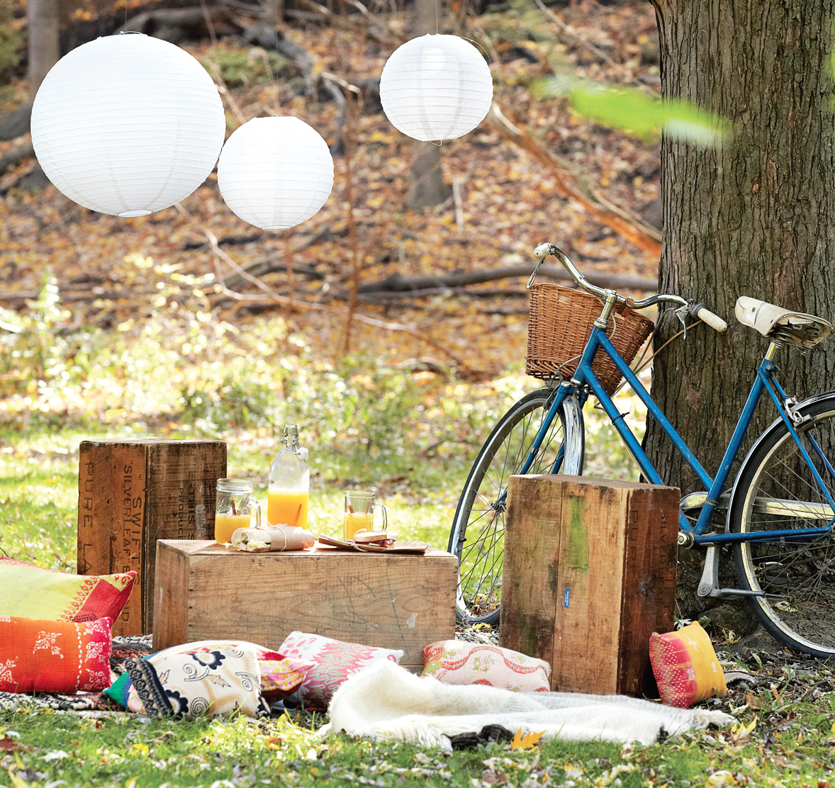 Picnic Decor Host A Picnic In Your Own Backyard Decor Tips And Recipes